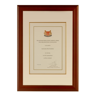distinguished_public_service_award_4_organisation_excellence