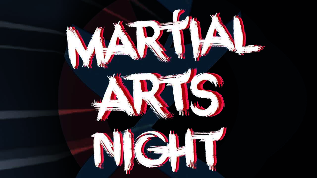 Martial Arts Night 2017